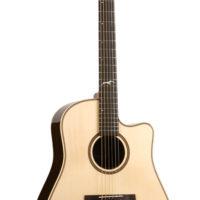Voice, guitar and theory teacher + Guitar Set-ups